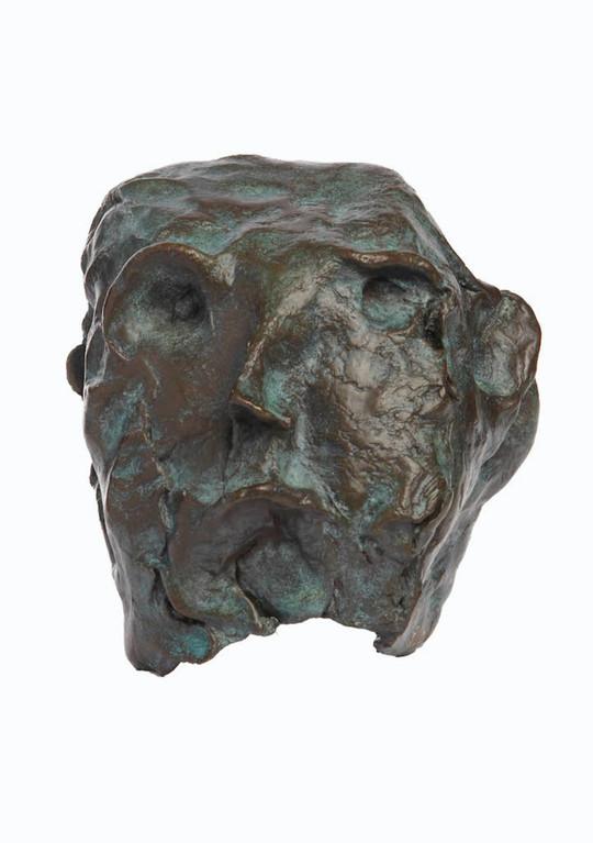Head 2011