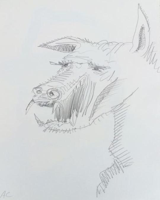 Piglet Boar II 2009