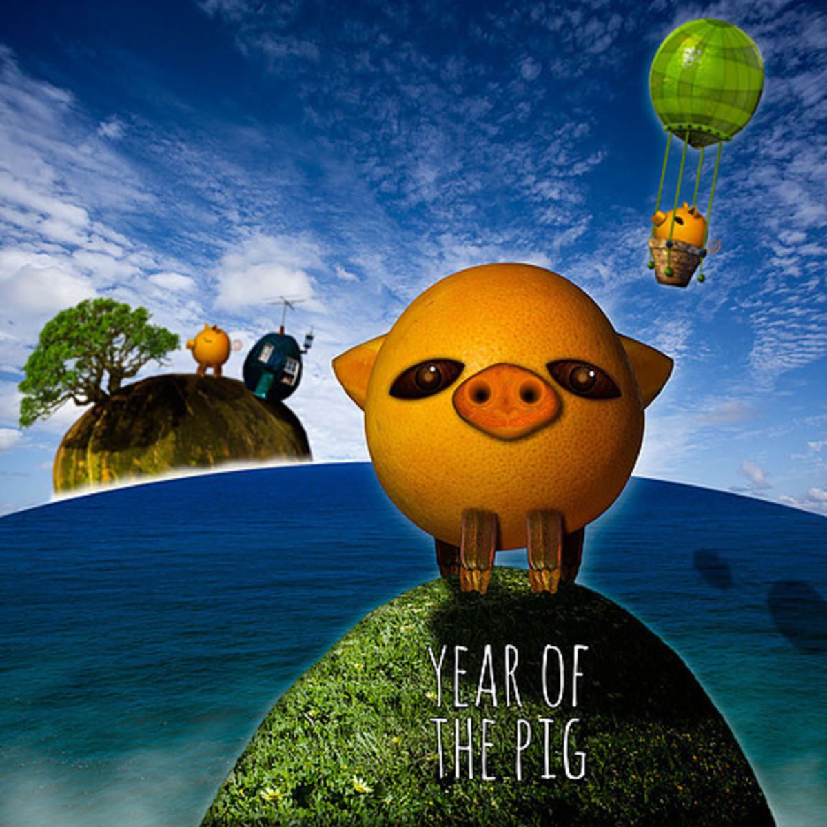 Carrie Webster - The Year of  The Pig