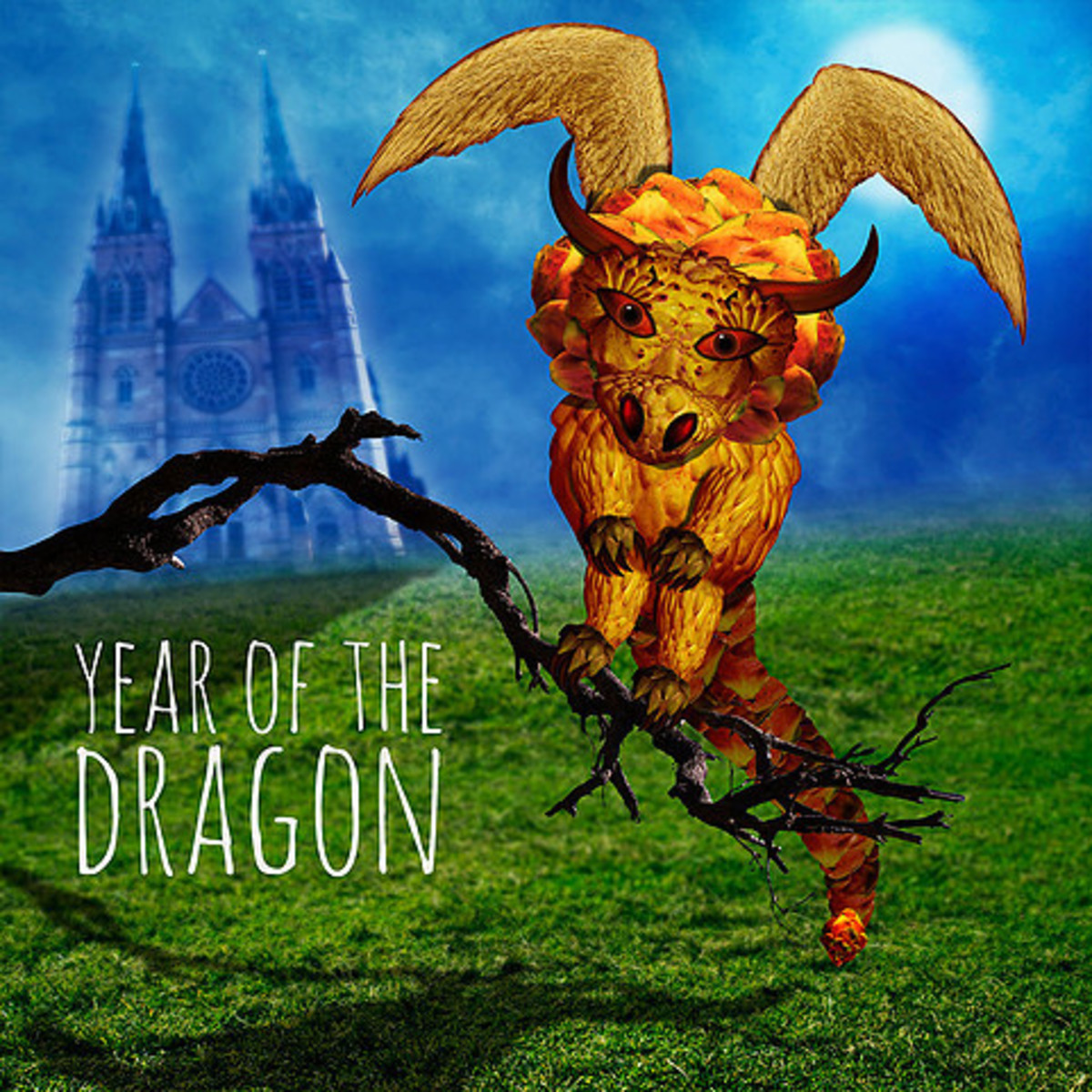 Carrie Webster - The Year of The Dragon