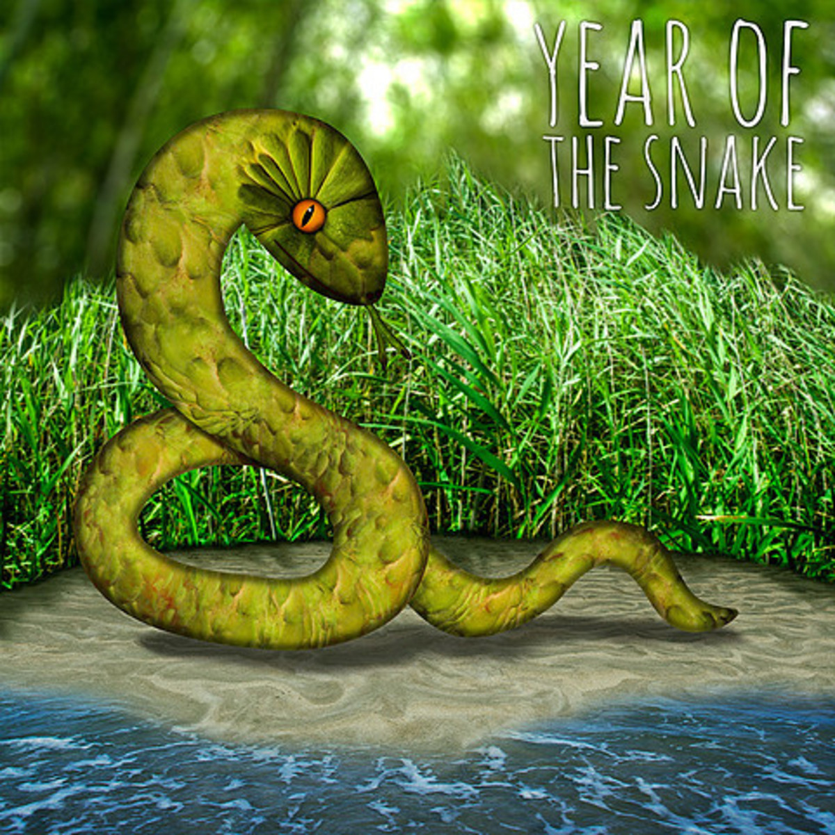 Carrie Webster - The Year of The Snake