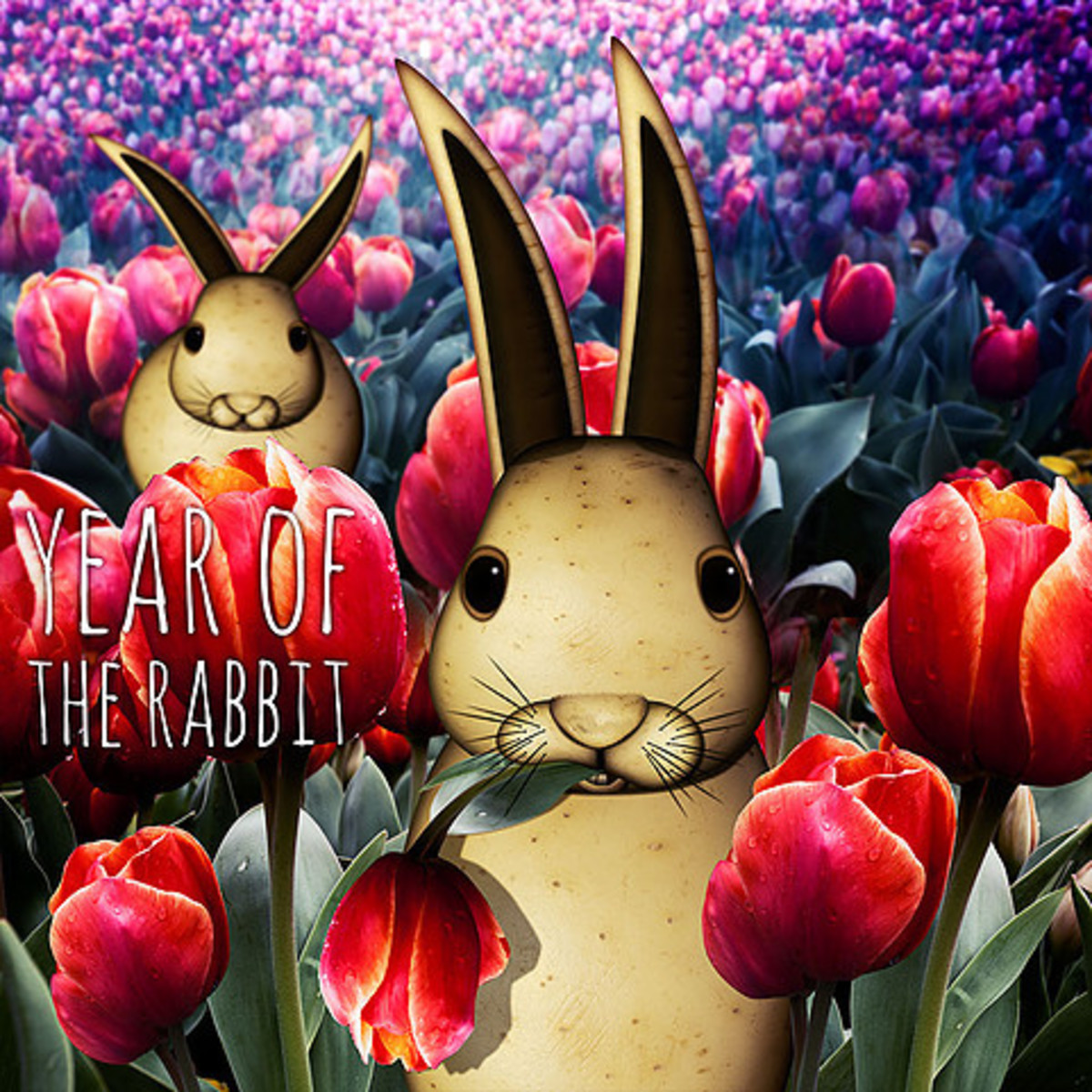 Carrie Webster - The Year of The Rabbit