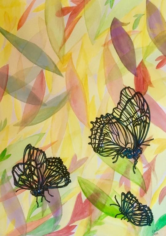 Translucent  Butterflies