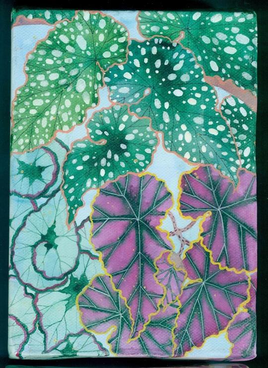 "Gabby Malpas - Little garden # 2 "" Begonias"