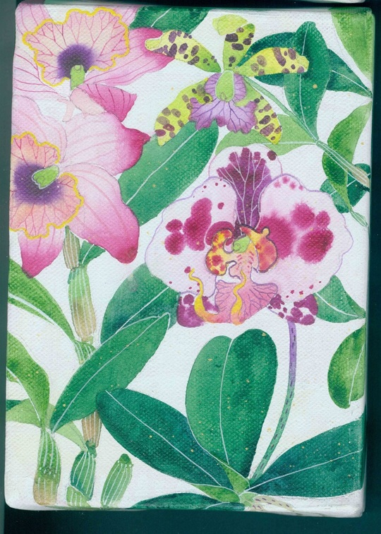 """Gabby Malpas - Little garden # 3 """"Orchids"""