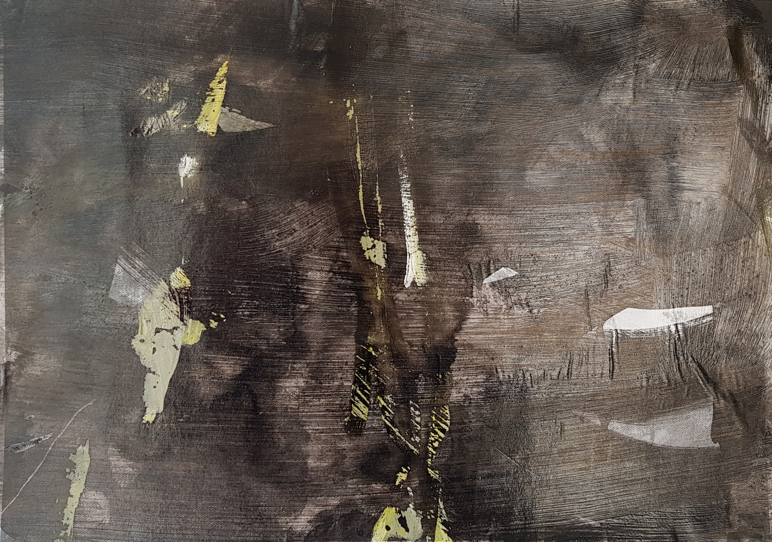 Amanda Watson - Branches, Twigs, and Moving Light Through the Trees